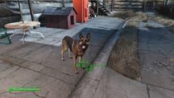 Fallout 4_20160103220138