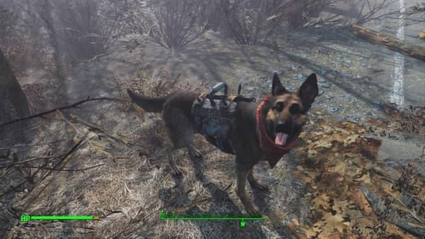 Fallout 4_20160105221129