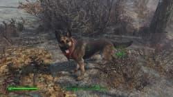Fallout 4_20160105221153